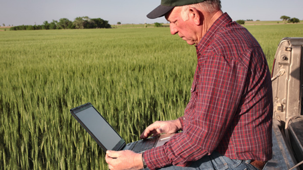 Agri business owner looking at resources on his laptop